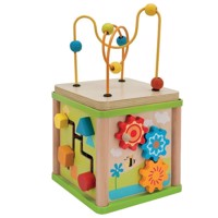 Eichhorn Activity Cube