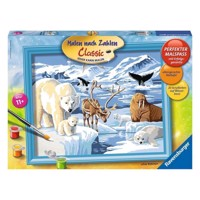 Ravensburger Painting by numbers-Animals on Antartica