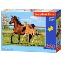 Puzzle Horse and Foal, 260st.