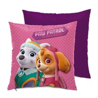 Pude Paw Patrol