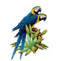 Wall sticker Parrots on branch