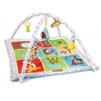 Baby Activities Gym - Blue