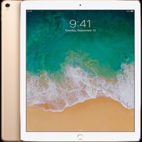 Apple iPad Pro  129  512GB  Wifi Gold UK