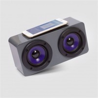 Boom - Induction Speaker (SW-06BOOMP)