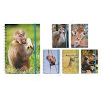 Comedy Wildlife Notebook A6