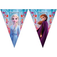 Disney Frozen 2 Flagline 2M