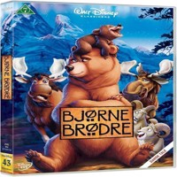 Disneys Brother Bear  DVD