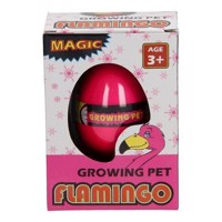 Growth Egg Flamingo