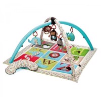Skip Hop - Activity Gym  - ABC