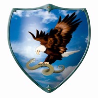Wooden shield for kids eagle and snake 49x32cm