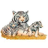 Wall sticker White Tigers